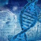 Rewrite Your Genetic Destiny